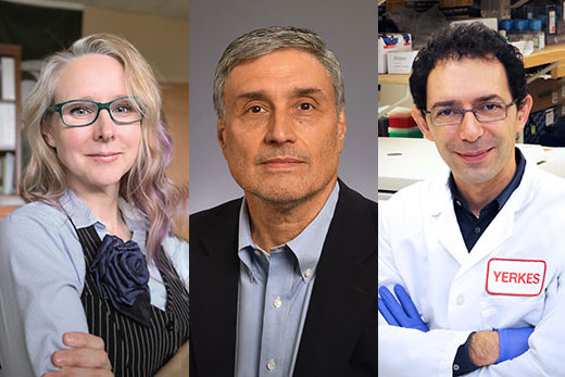 A cure for HIV: Emory receives $23.8 million NIH grant to accelerate research